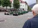 Marschwertung 2015 Bezirk Steyr